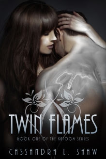 Ebook-Twin-Flames-1200x1800-version