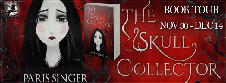 The Skull Collector Banner 851 x 315