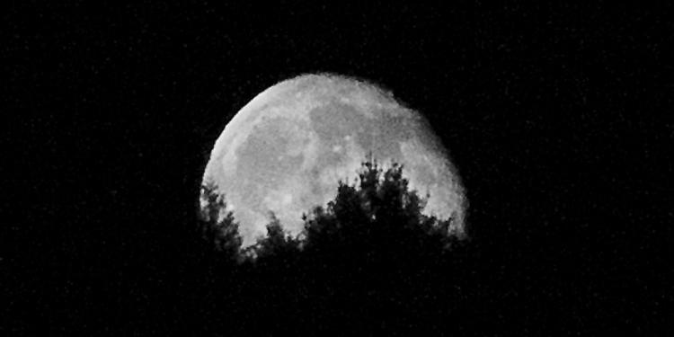 moon behind