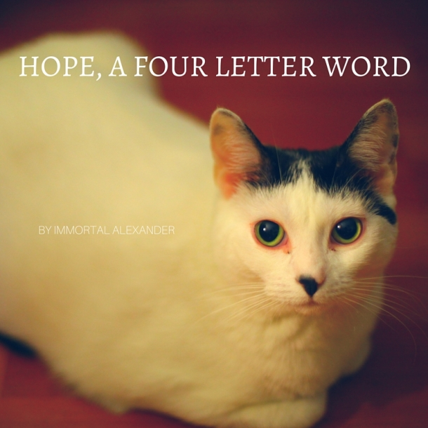 HOPE, A FOUR LETTER WORD