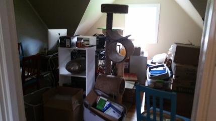 THIS mess will eventually be my living room...